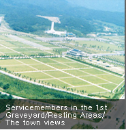 Servicemembers in the 1st Graveyard/Resting Areas/The town views